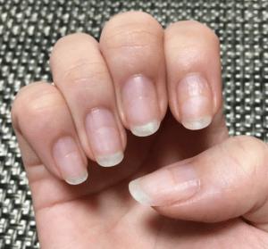 11月の爪